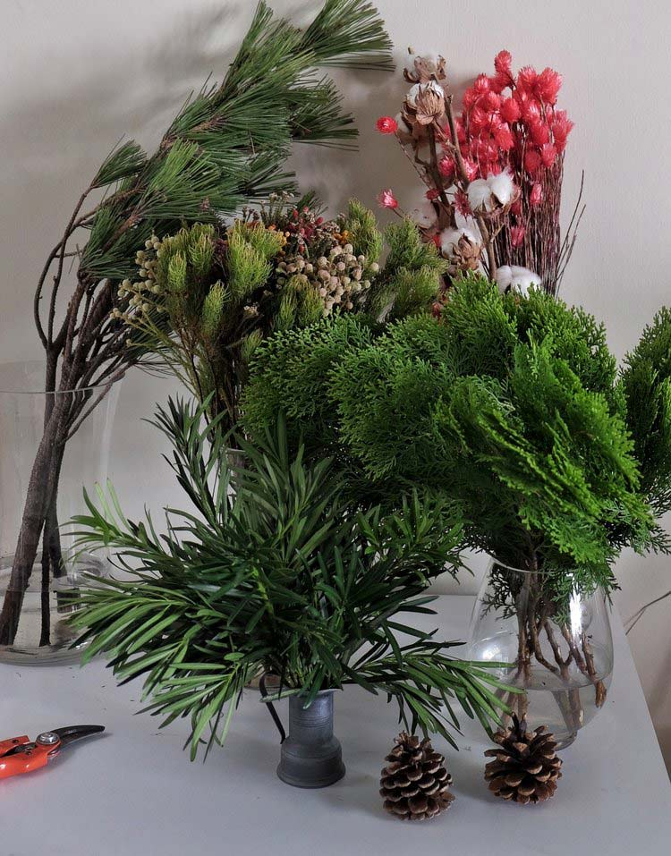 some green plants, with pine trees so remind christmas period