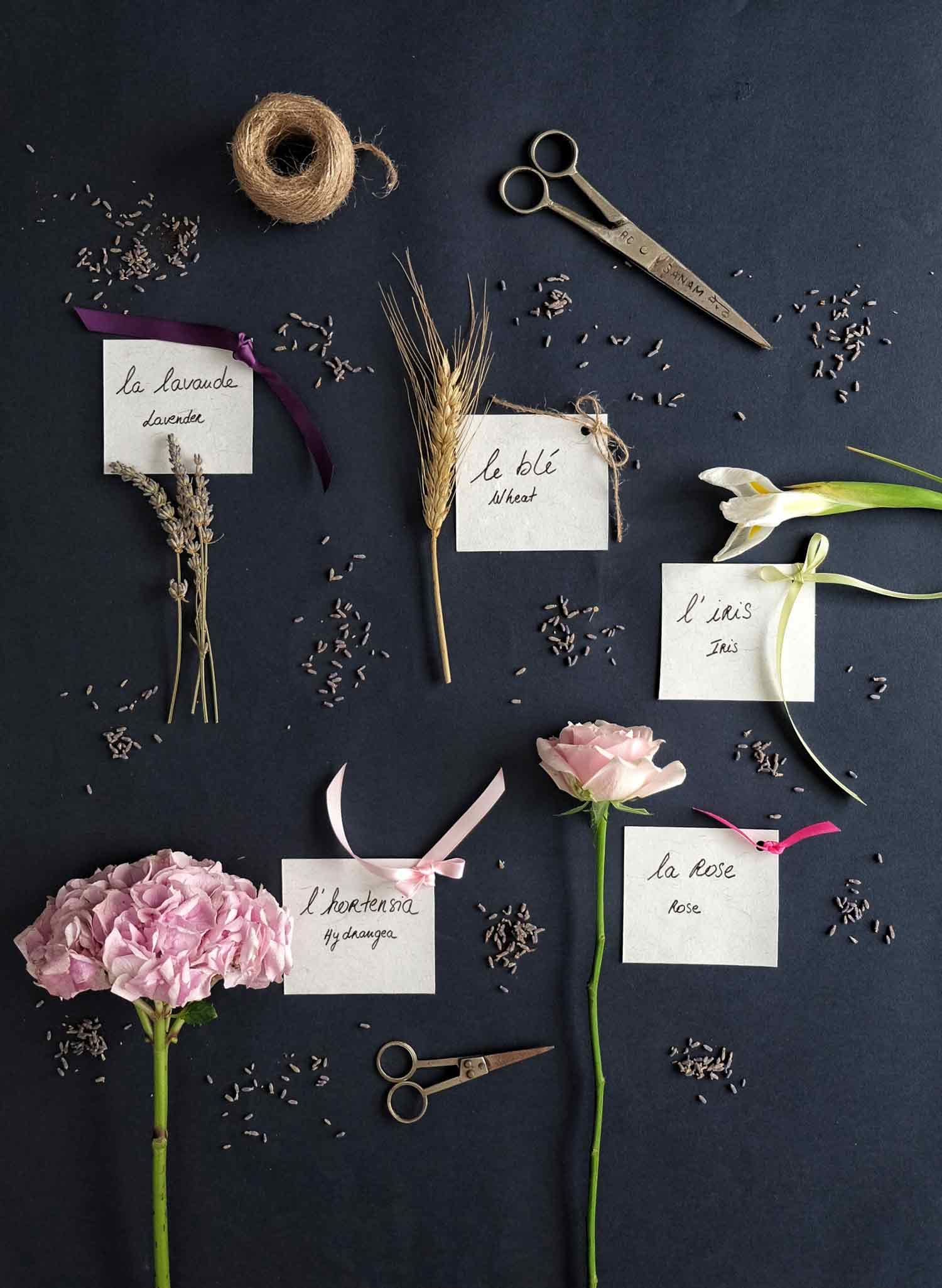 workshop showing the different names of flowers, with hydrangea, roses, iris, wheat and lavender
